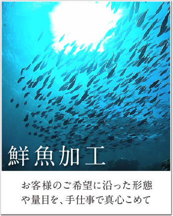 top_image01
